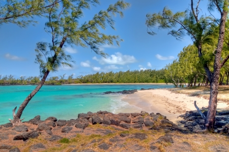mauritius: Beautiful landscape of Mauritius beach