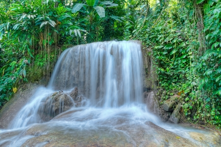 Beautiful waterfall in a jungle