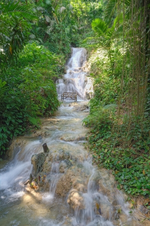 waterscape: Jamaican waterfall in a rainforest park Stock Photo