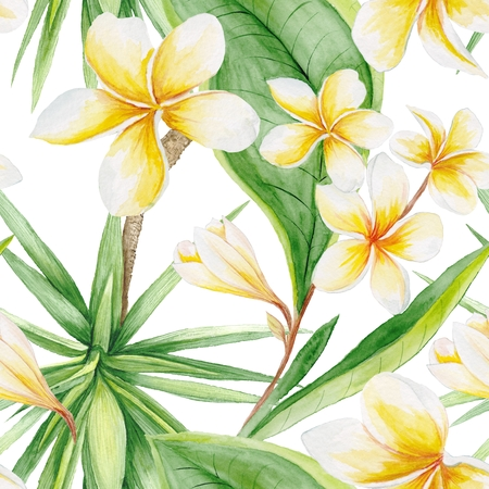 thai orchid: Hand-painted watercolor botanical illustration with plumeria flowers and yucca tree on white background for textile design