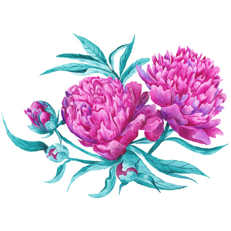 Hand-painted detailed watercolor vignette with blossoming flowers, buds and leaves isolated on white background