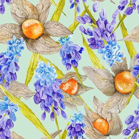 botanic: Tasty colorful botanic illustration background for textile and wallpaper design with Muskari and Physalis