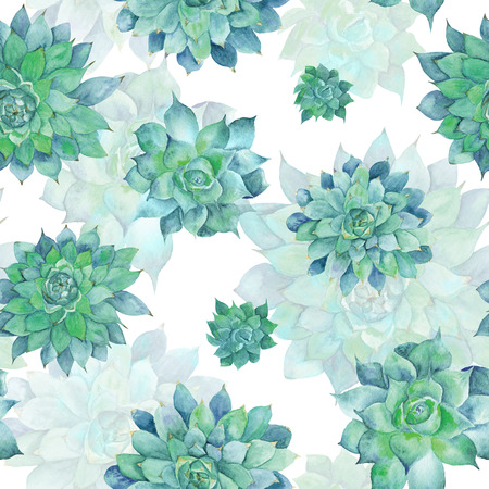 Hand-painted seamless texture with green tropical plant isolated on white background, Sempervivum botanical illustration