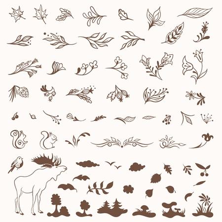 Bundle of elegant sketch nature symbols - leaves, flowers, animals for design