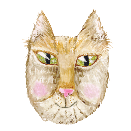 Funny cat face painting isolated on white background