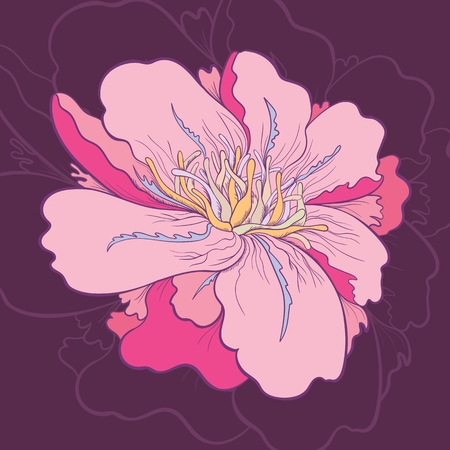 maroon background: Detailed Sketch floral card illustration with pink peony flower on maroon background Illustration