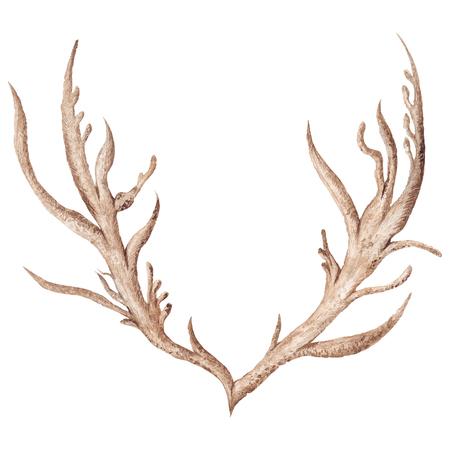 Creative tribal boho style horn illustration isolated on white background Stock Photo