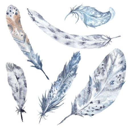 Hand-painted boho tribal illustration with feathers isolated on white background Stock Photo