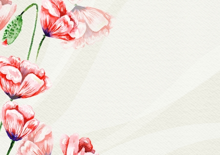 Poppy Spring Card Template Stockfoto