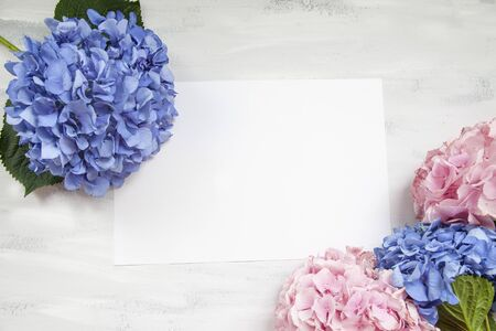 Pastel colored Hydrangea Flowers on White painted table