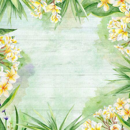 Plants botanic frame with plumeria flowers and yucca tree Stok Fotoğraf