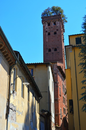 lucca: Tower in Lucca (Italy) Stock Photo