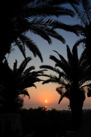 楽園の日の出