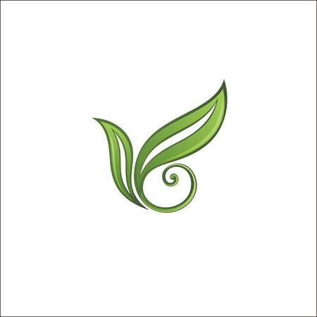 spring leaf: Spring leaf  illustration