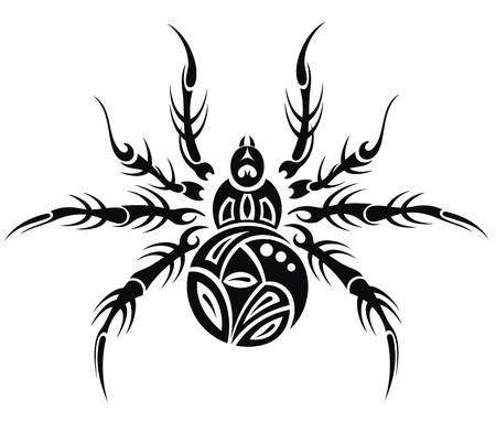 wild web: Spider illustration