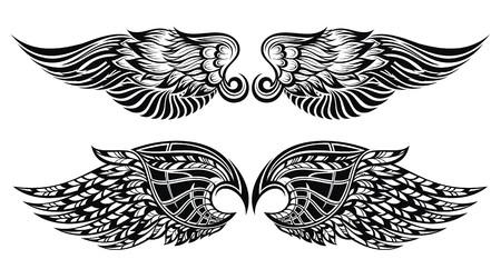 tatouage ange: Ailes Illustration