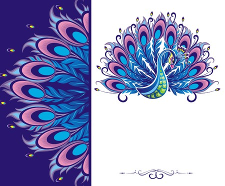 pluma de pavo real: Peacock tarjeta