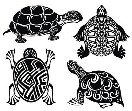 indigenous culture: Turtles Illustration