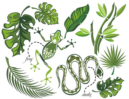 bamboo snake: Set of tropical leaves and reptiles Illustration