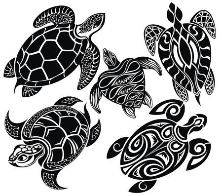 maories: Las tortugas Vectores