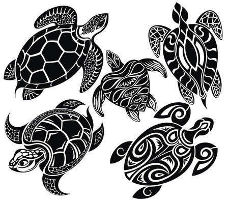 sea turtle: Turtles Illustration