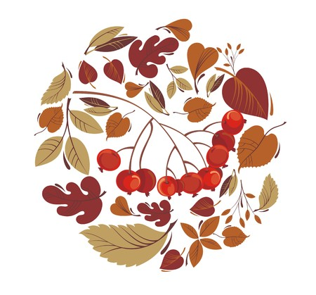 rowanberry: Autumn leaves with rowanberry