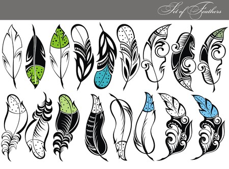 Feather collection, feather silhouettes
