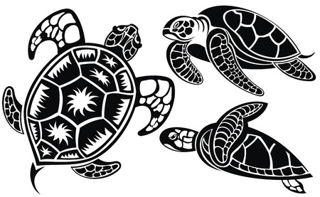 Vector illustration of turtles Vectores