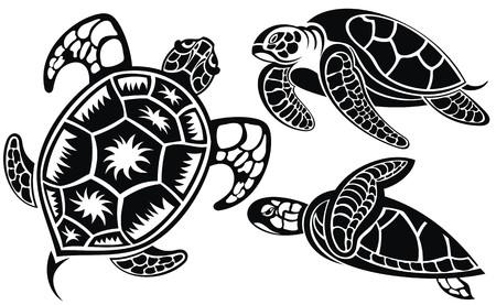 Vector illustration of turtles Illustration
