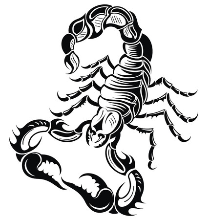 scorpio: Black scorpion Illustration