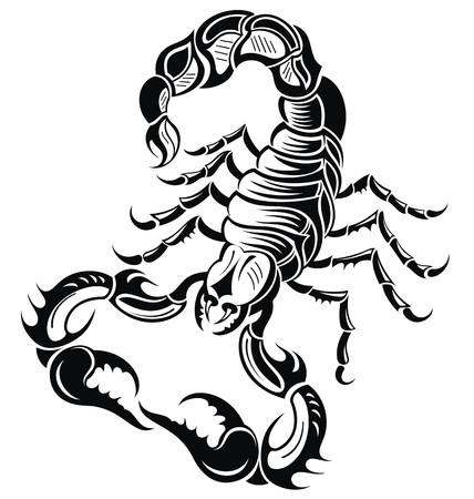 escorpio: Escorpión negro