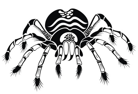 tarantula: Black tarantula. Tattoo spider Illustration