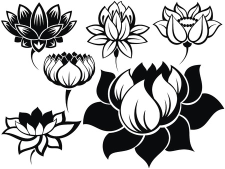 black and white flowers: Set of lotuses