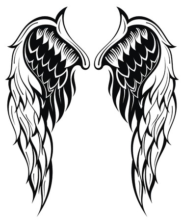 angel illustration: Vector wings