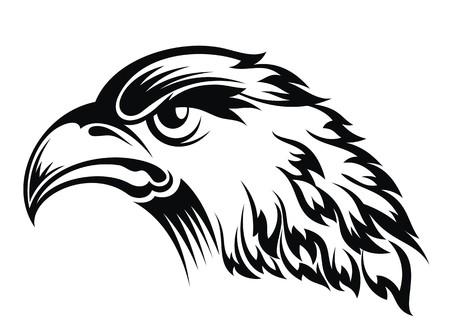 cartoon eagle: Realistic eagle head