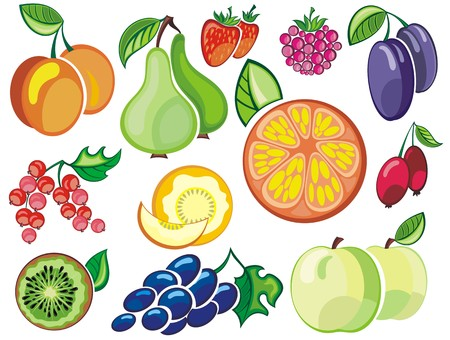 cranberry illustration: Collection of fruits icons Illustration
