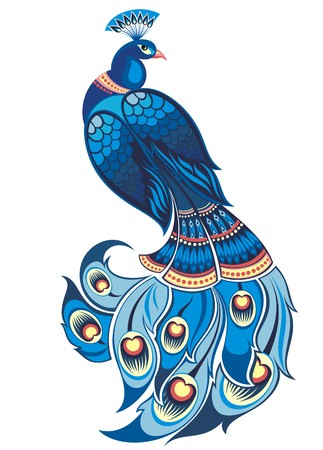 fashion design: peacock Illustration