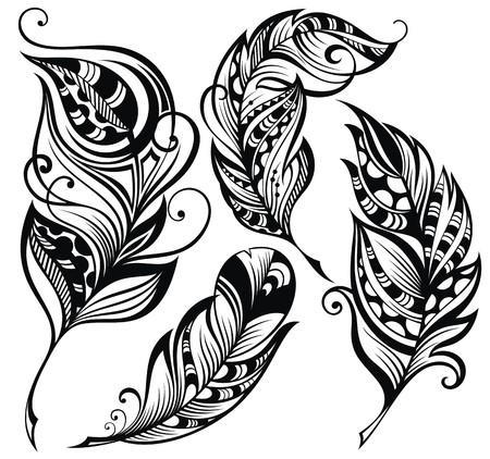 feather: Conjunto de plumas