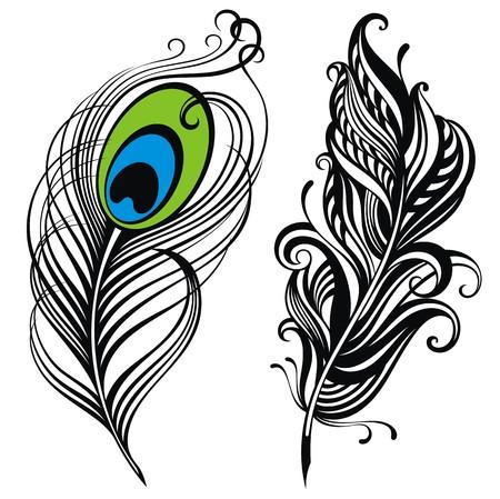 plumes  Vecteurs