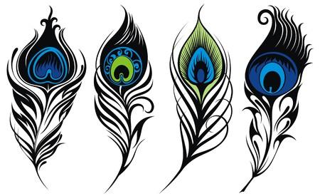 tatouage oiseau: Stylisé, vecteur plumes de paon Illustration