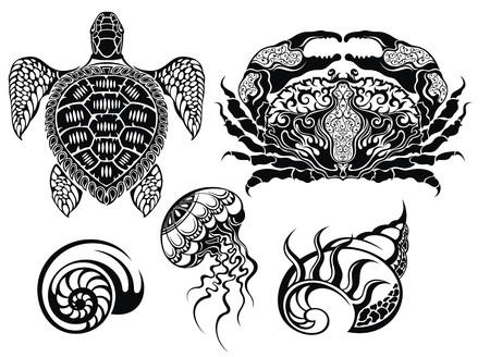 crustacean: Crustacean illustrations.Sea life Illustration
