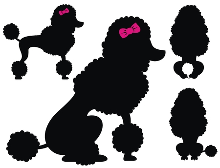 Poodle dog vector silhouettes Ilustracja