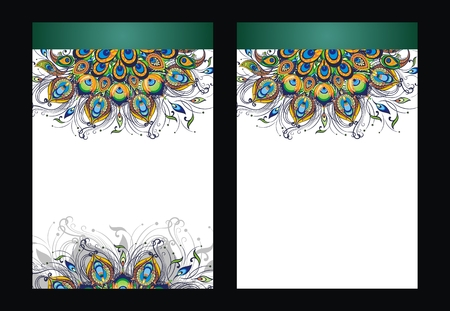 Peacock feathers cover design template Vector illustration.