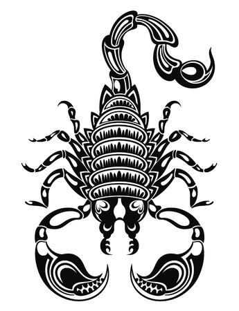 Scorpion illustration .Scorpion icon. Vector scorpion. Vector Illustration