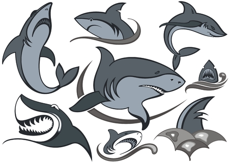 Fish.Set of sharks. Vector design with waves