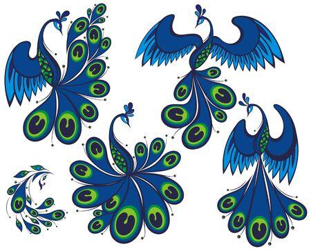 Peacock  design  illustration