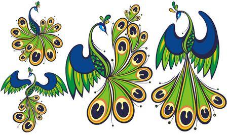 Peacocks. Peacock vector set.