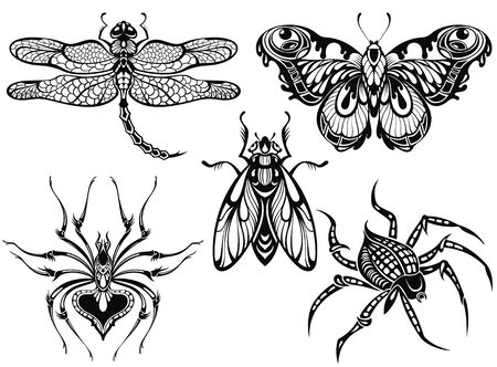 Insect illustration. Black butterflies, bug, dragonfly drawin, spider. Tattoo sketch set.