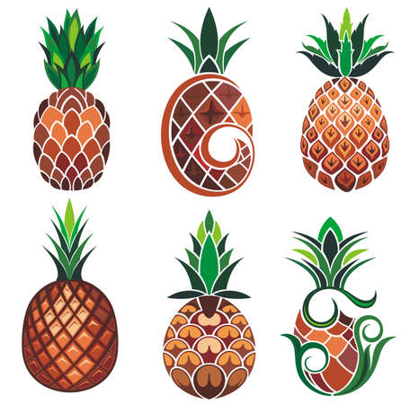illustration set of pineapple in different types