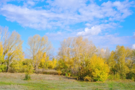 Beautiful autumn landscape Stock Photo